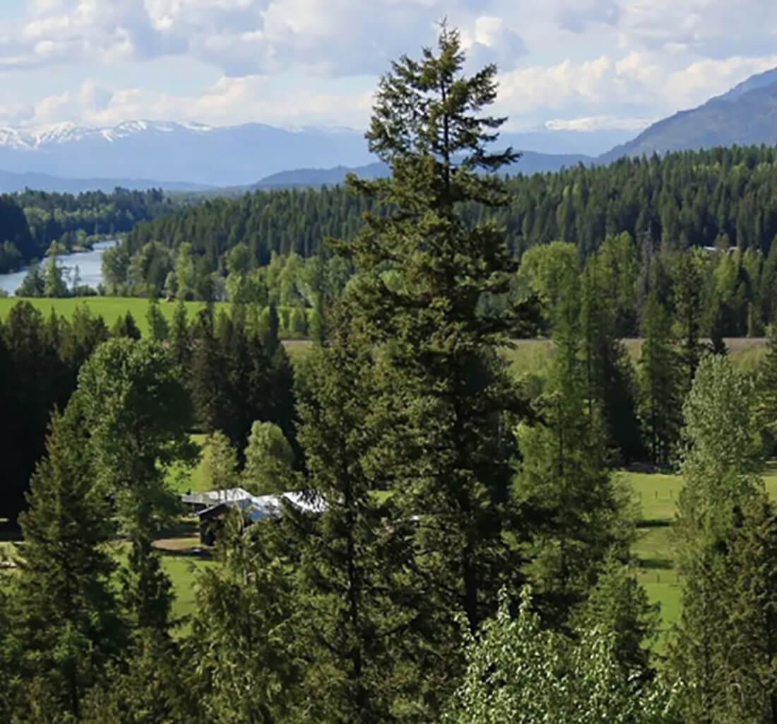 Chapman Springs Ranch